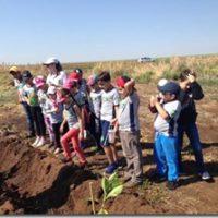 Parceria entre o Projeto Reviva o Óleo e Projeto  Homens dos Dedos Verdes está colhendo bons frutos.